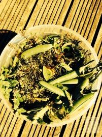 Herb Food