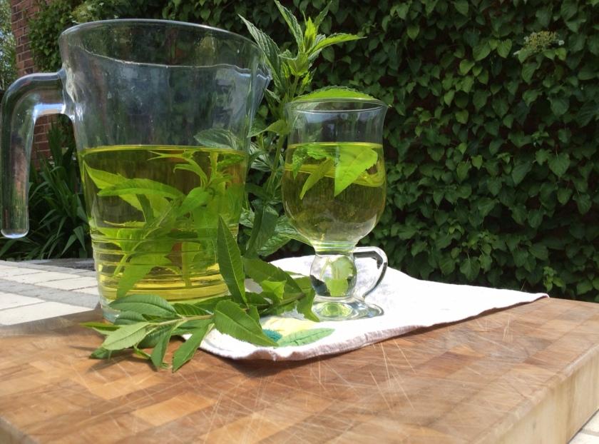 mint tea 1